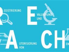 REACH检测是什么