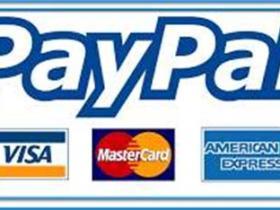 PayPal不能登录解决办法