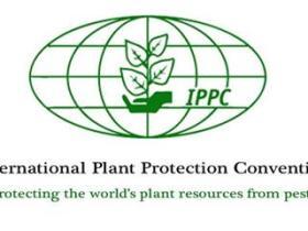 IPPC标识是什么