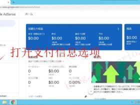 Google Adsense美号税务填写教程
