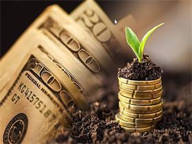 外汇期货和外汇期权的区别