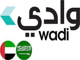 中东电商网站:Wadi