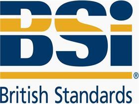 BSI认证流程